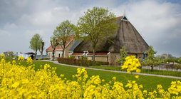 Bed en Breakfast Oppe Klincke in Franeker, Friesland - Nederland