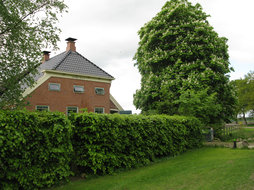 Janny Hoeve Bed and Breakfast in Westdorp, Drenthe - Nederland