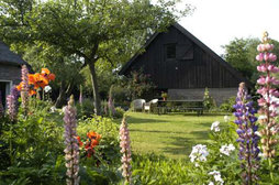 Bed & Breakfast Anderen in Anderen, Drenthe - Nederland